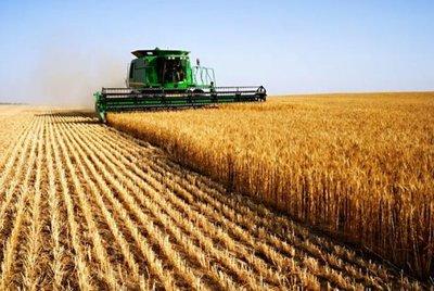 Ekonomik Ve Sosyal Hayat / Toprağın Önemi-Tarihte Toprak Yönetimi