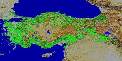 Türkiye'de Yüzey Şekillerinin Genel Özellikleri