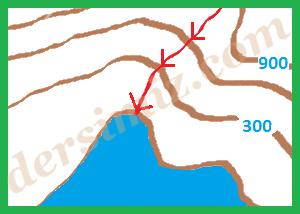 halic