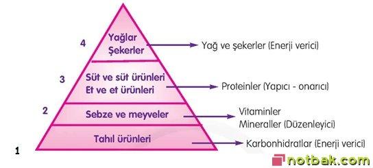 enerji piramidi